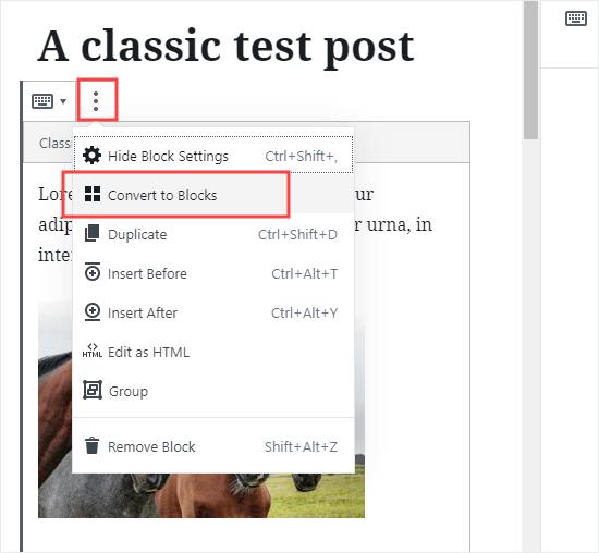 将单个帖子转换为新的块格式