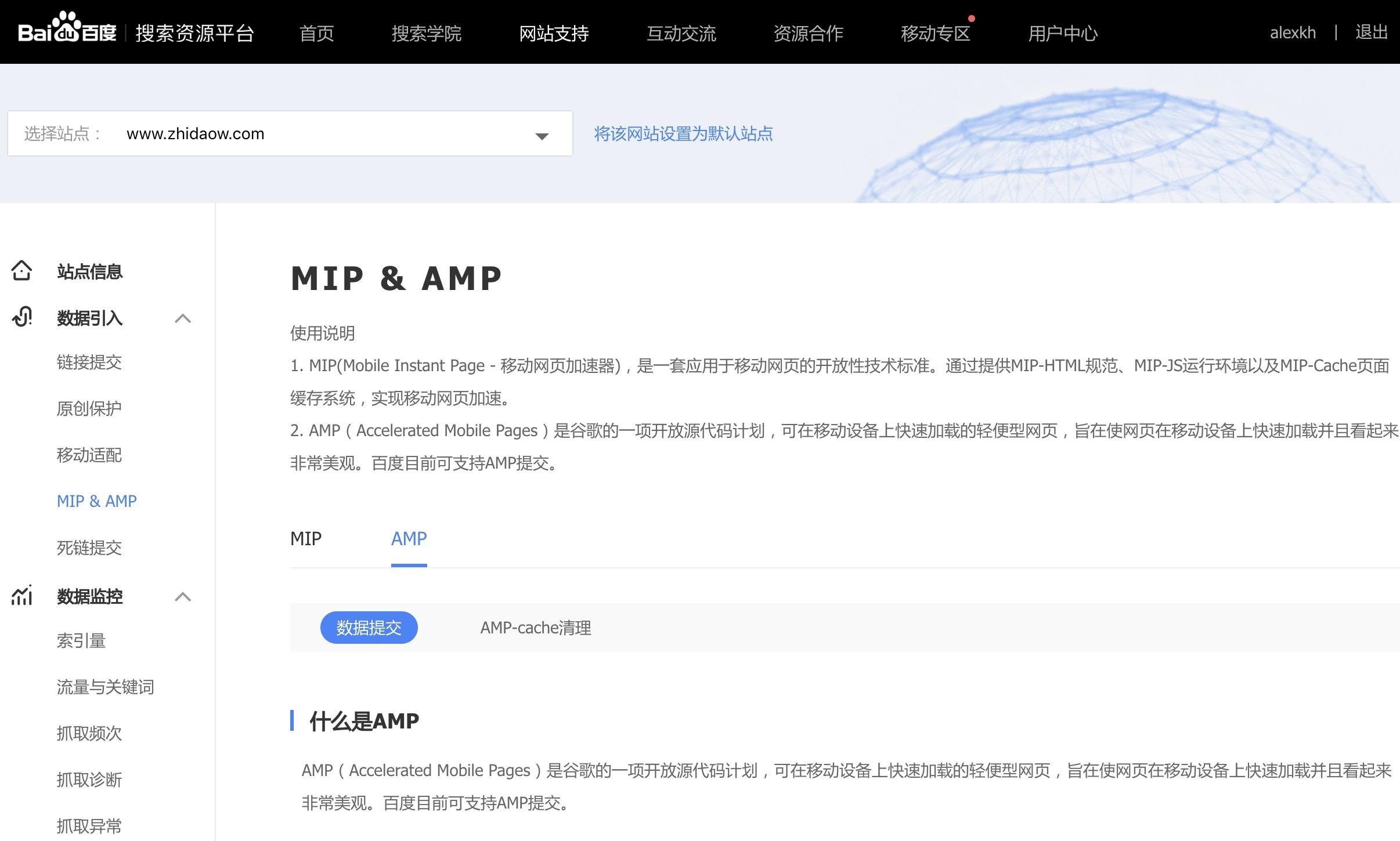 GOOGLE AMP 完全指南 - 附实战心得